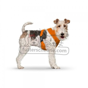 CURLI Brustgeschirr Plush Basic AIR-MESH orange für Hunde