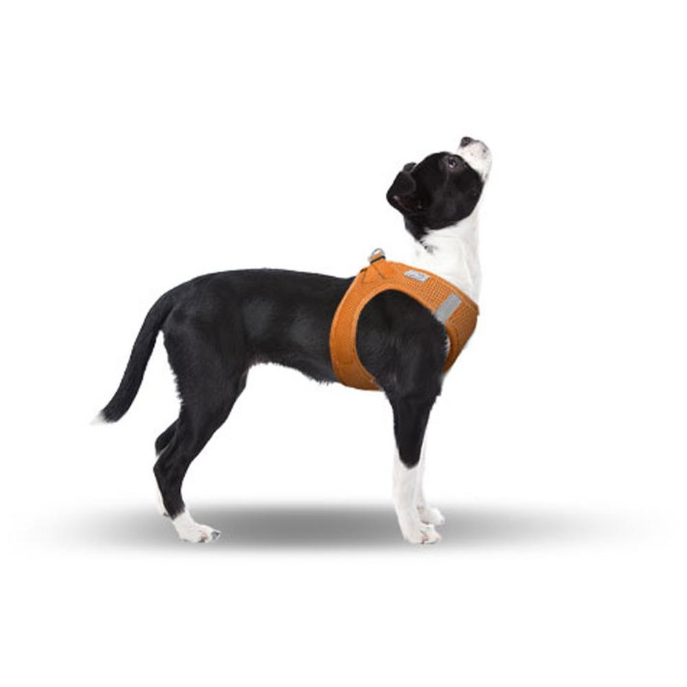 CURLI Brustgeschirr Plush Vest AIR-MESH orange für Hunde